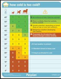 dog temperature chart
