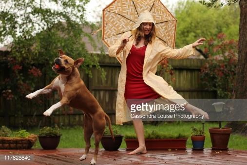 dog rain woman